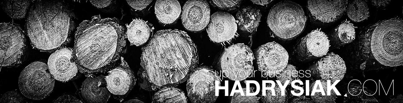 up your business   HADRYSIAK.COM